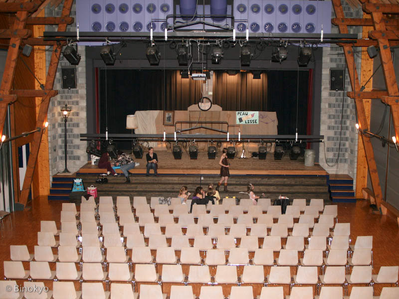 Atelier théâtre Binokyo - représentation 2008